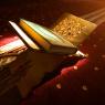 قرآن کریم میں لغوی اعجاز کے وقفات